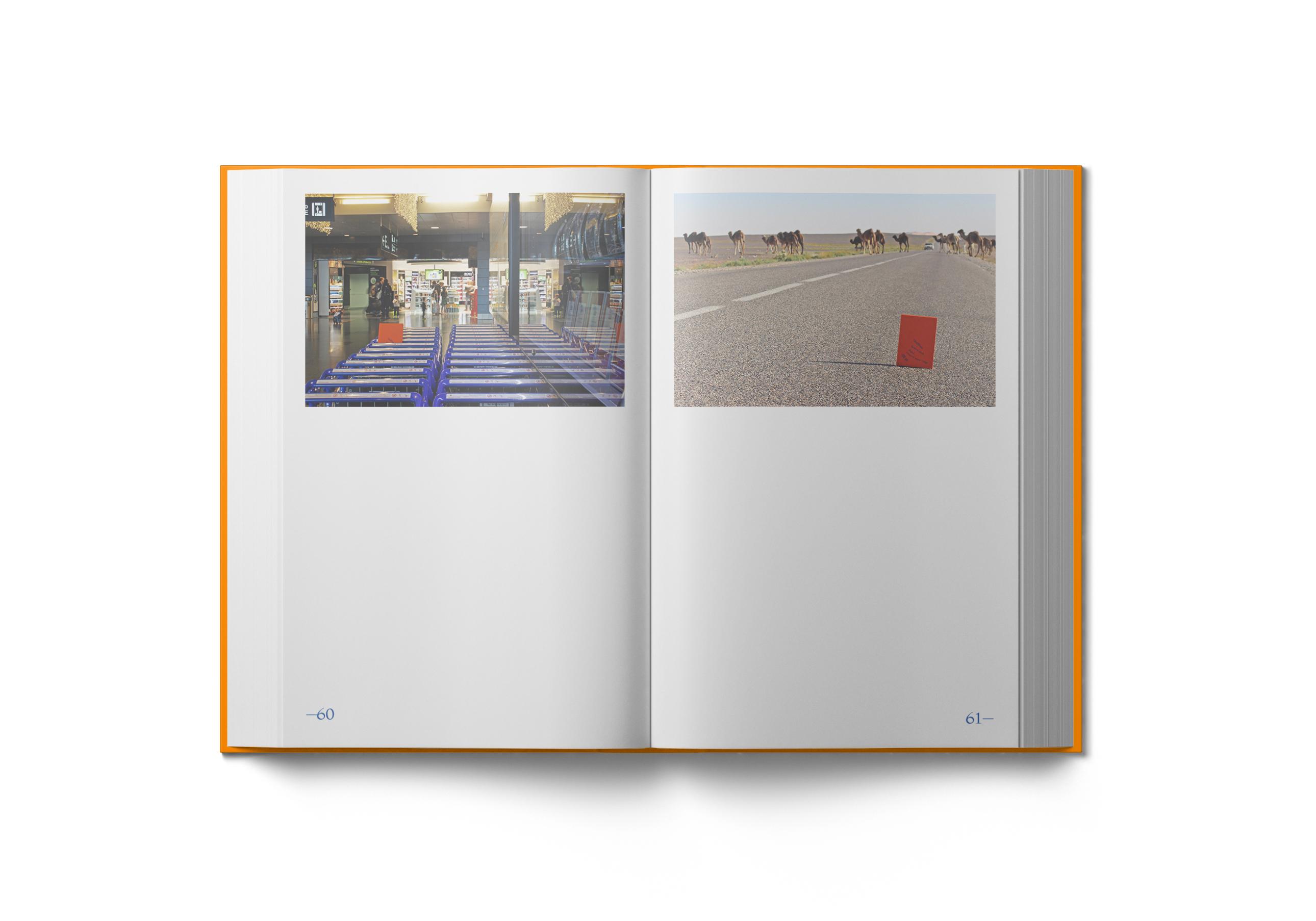 Interior Libro ContentContinent